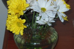 st_louis_flowers